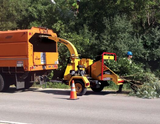 Commercial Tree Services-Coral Springs FL Tree Trimming and Stump Grinding Services-We Offer Tree Trimming Services, Tree Removal, Tree Pruning, Tree Cutting, Residential and Commercial Tree Trimming Services, Storm Damage, Emergency Tree Removal, Land Clearing, Tree Companies, Tree Care Service, Stump Grinding, and we're the Best Tree Trimming Company Near You Guaranteed!