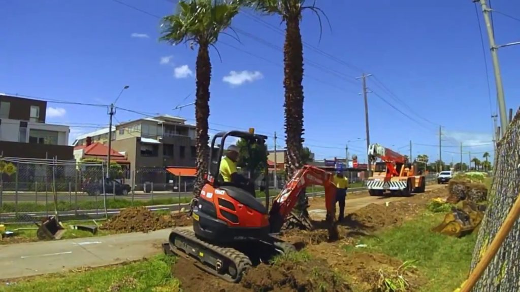 Palm Tree Removal-Coral Springs FL Tree Trimming and Stump Grinding Services-We Offer Tree Trimming Services, Tree Removal, Tree Pruning, Tree Cutting, Residential and Commercial Tree Trimming Services, Storm Damage, Emergency Tree Removal, Land Clearing, Tree Companies, Tree Care Service, Stump Grinding, and we're the Best Tree Trimming Company Near You Guaranteed!